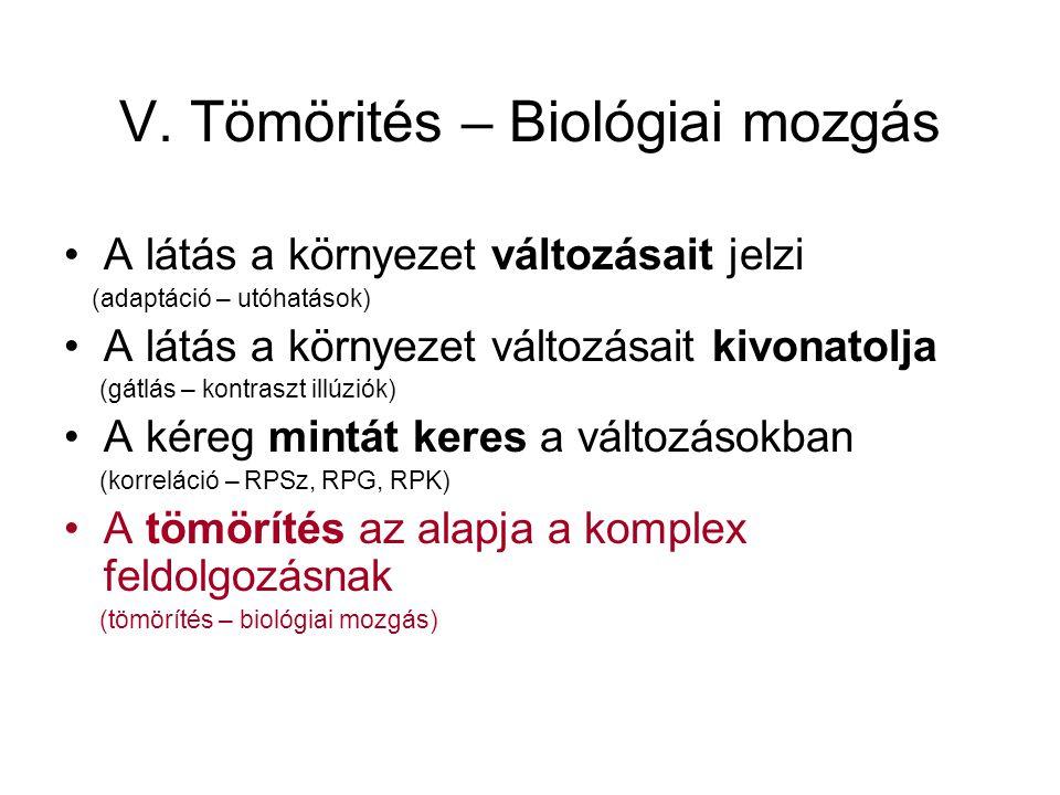 V. Tömörités – Biológiai mozgás A látás a környezet változásait jelzi (adaptáció – utóhatások) A látás a környezet változásait kivonatolja (gátlás – k