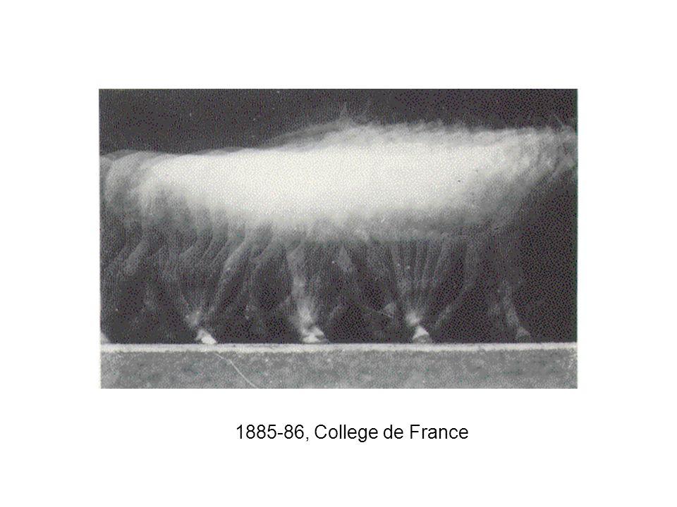 1885-86, College de France