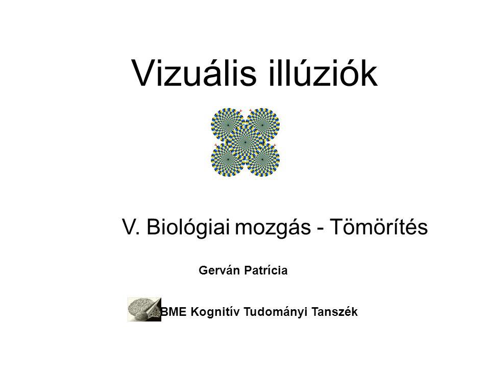Vizuális illúziók V. Biológiai mozgás - Tömörítés Gerván Patrícia BME Kognitív Tudományi Tanszék