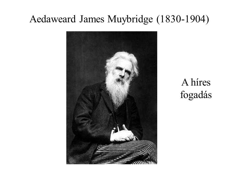 Aedaweard James Muybridge (1830-1904) A híres fogadás