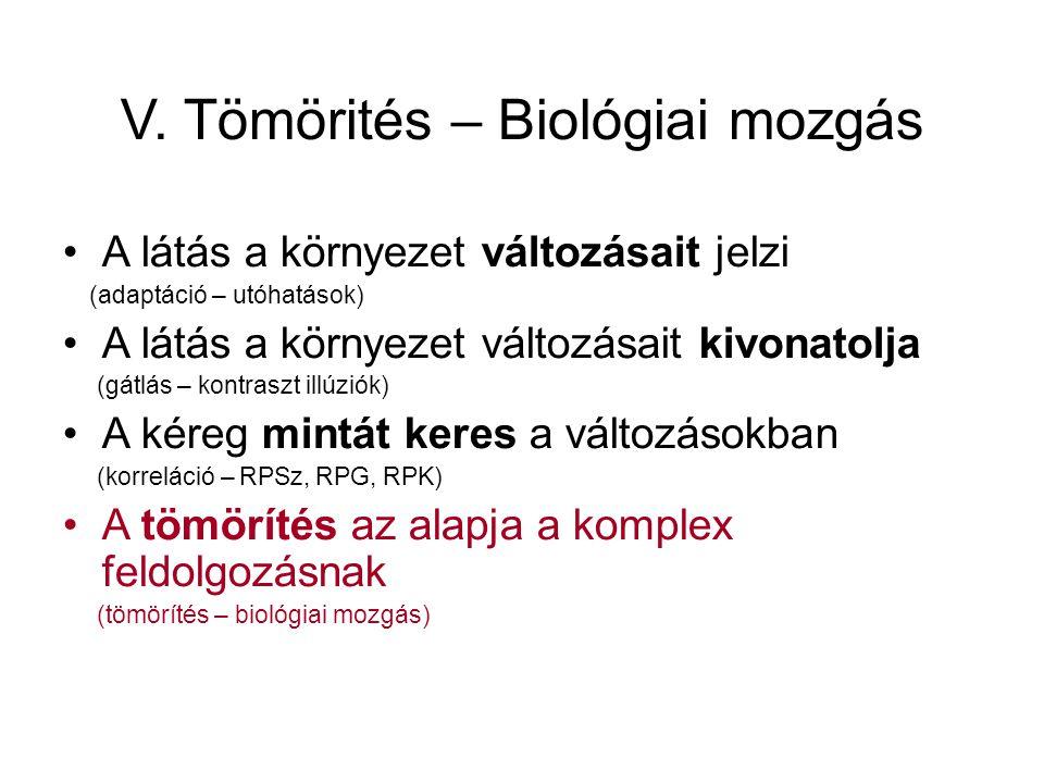 A biológia mozgás – pont- figurák: A csecsemők már 3 hónaposan felismerik a biológiai mozgást (eg, Fox & McDaniel, 1982; Simion et al, 2007)