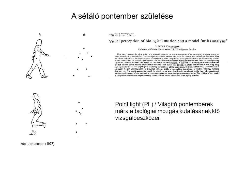 A sétáló pontember születése kép: Johansson (1973) Point light (PL) / Világító pontemberek mára a biológiai mozgás kutatásának kfő vizsgálóeszközei.