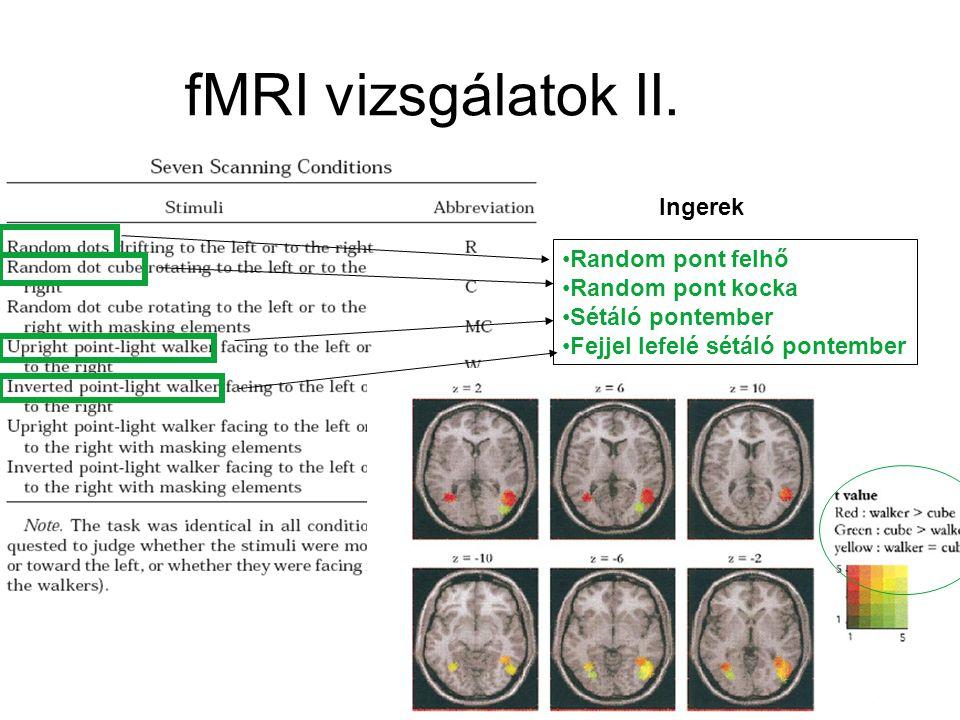 Grezes et al., 2001 fMRI vizsgálatok II. Random pont felhő Random pont kocka Sétáló pontember Fejjel lefelé sétáló pontember Ingerek