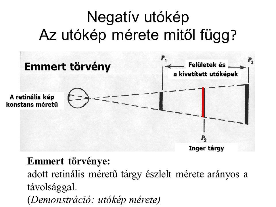 Emmert törvény A retinális kép konstans méretű Inger tárgy Felületek és a kivetített utóképek a kivetített utóképek Emmert törvénye: adott retinális m
