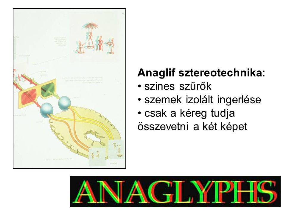 Anaglif sztereotechnika: szines szűrők szemek izolált ingerlése csak a kéreg tudja összevetni a két képet