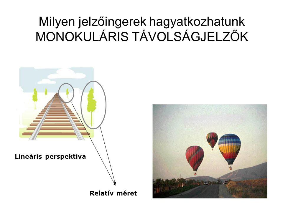 Milyen jelzőingerek hagyatkozhatunk MONOKULÁRIS TÁVOLSÁGJELZŐK Lineáris perspektíva Relatív méret