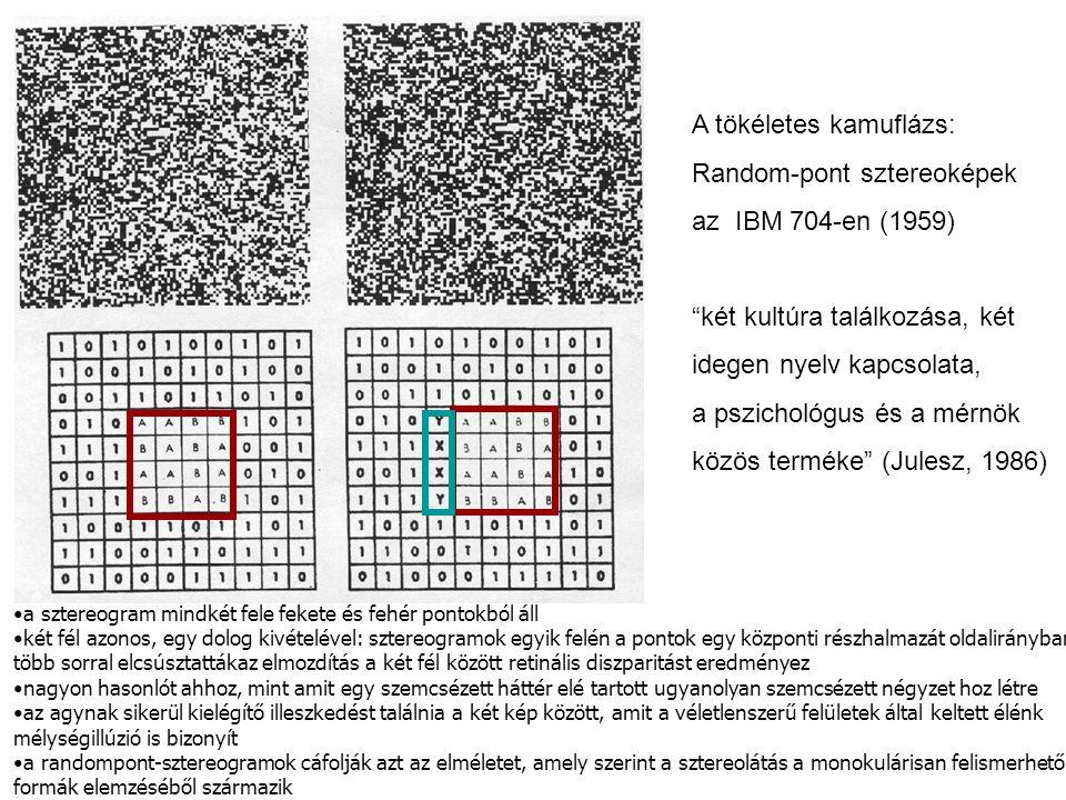 """A tökéletes kamuflázs: Random-pont sztereoképek az IBM 704-en (1959) """"két kultúra találkozása, két idegen nyelv kapcsolata, a pszichológus és a mérnök"""