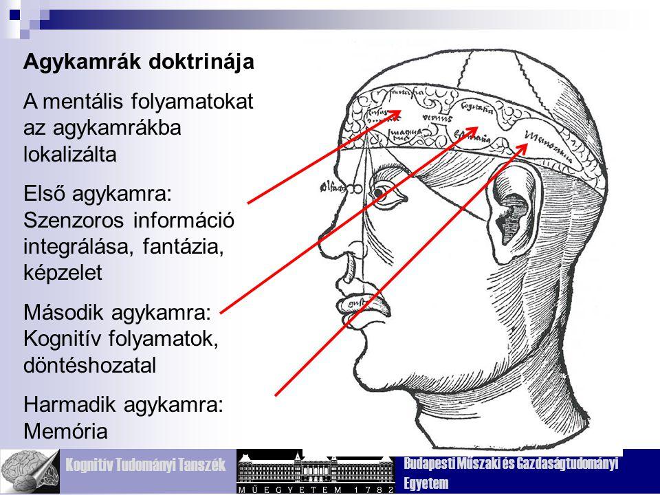Kognitív Tudományi Tanszék Budapesti Műszaki és Gazdaságtudományi Egyetem Edwin Smith surgical papirus