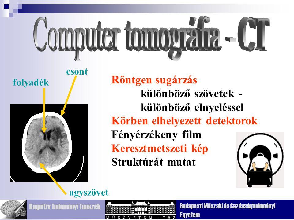 Kognitív Tudományi Tanszék Budapesti Műszaki és Gazdaságtudományi Egyetem