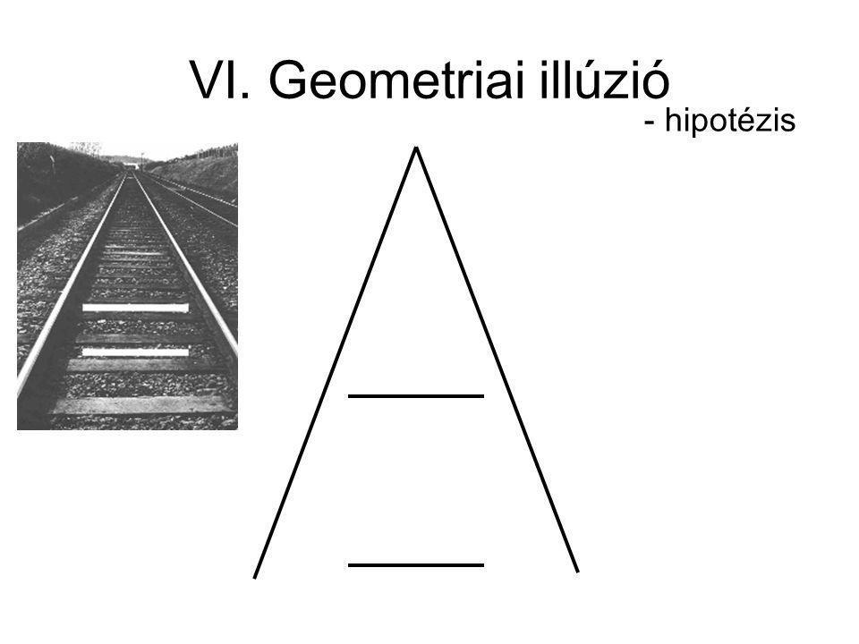 VI. Geometriai illúzió - hipotézis