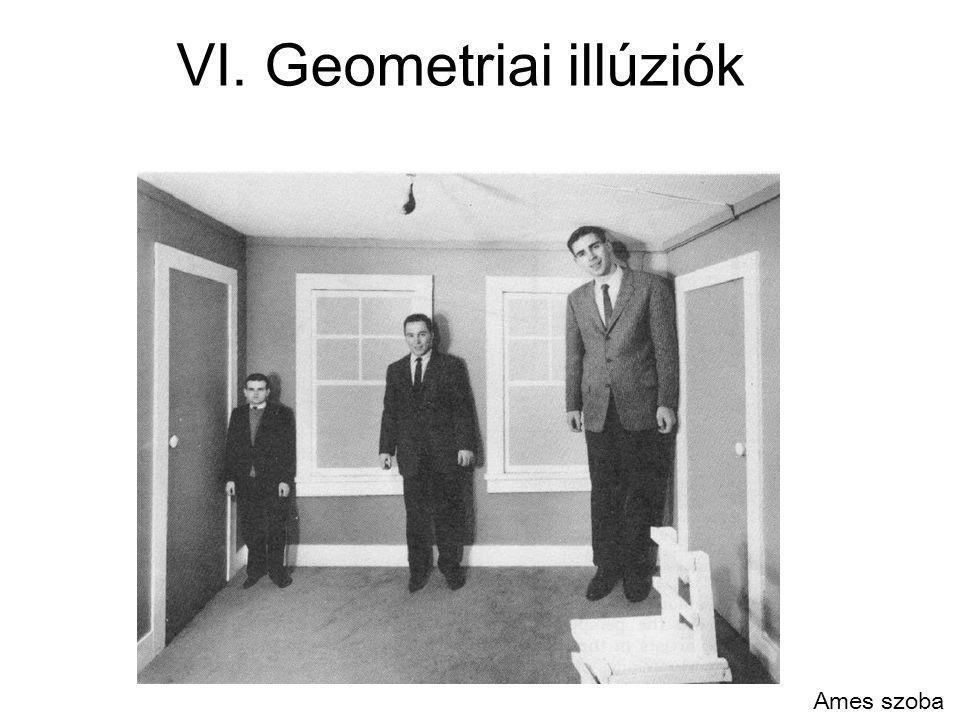 VI. Geometriai illúziók Ames szoba