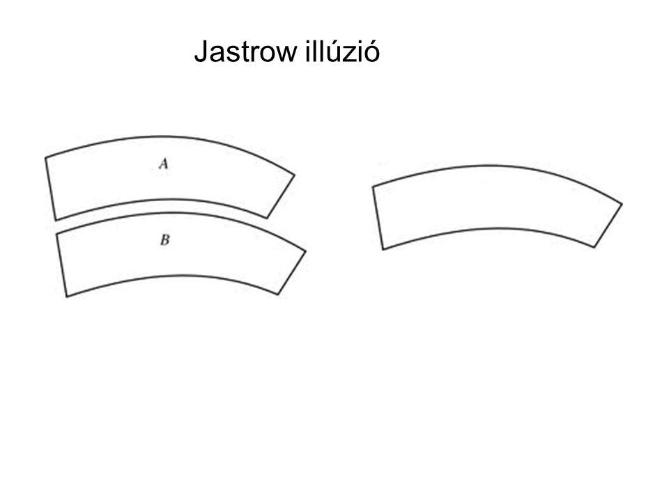 Jastrow illúzió