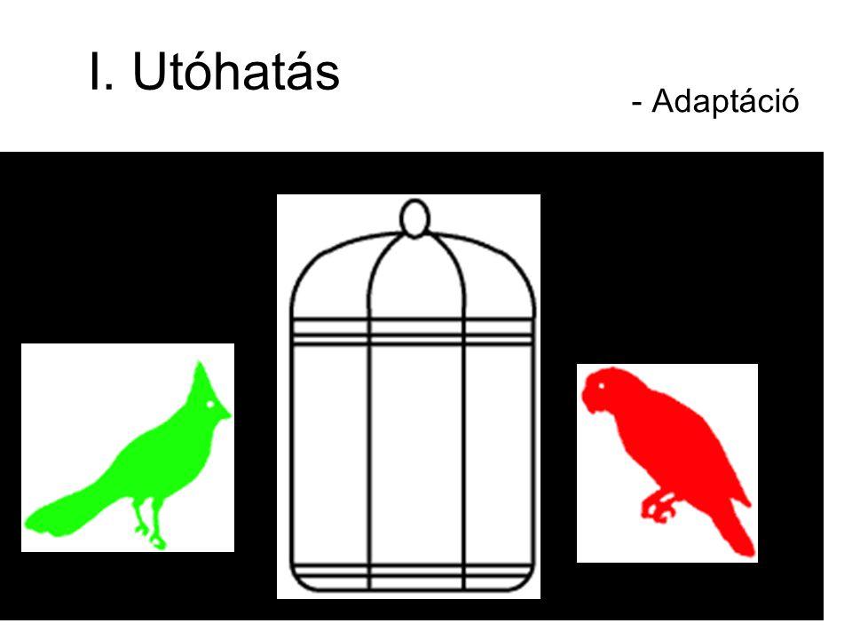 I. Utóhatás - Adaptáció
