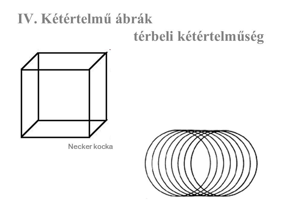 IV. Kétértelmű ábrák térbeli kétértelműség Necker kocka