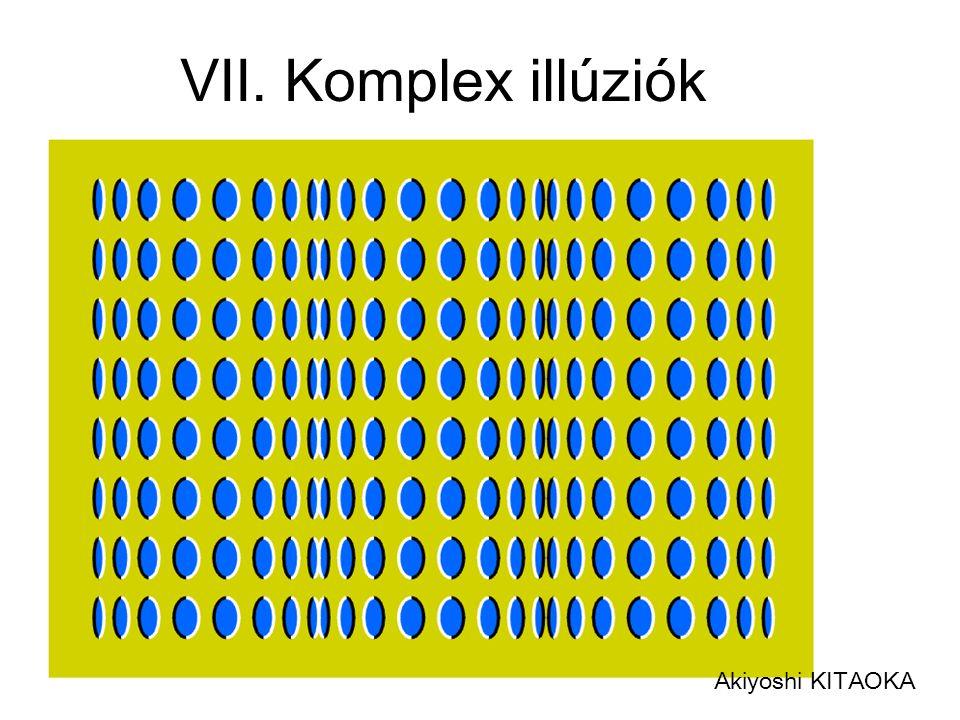 Akiyoshi KITAOKA VII. Komplex illúziók