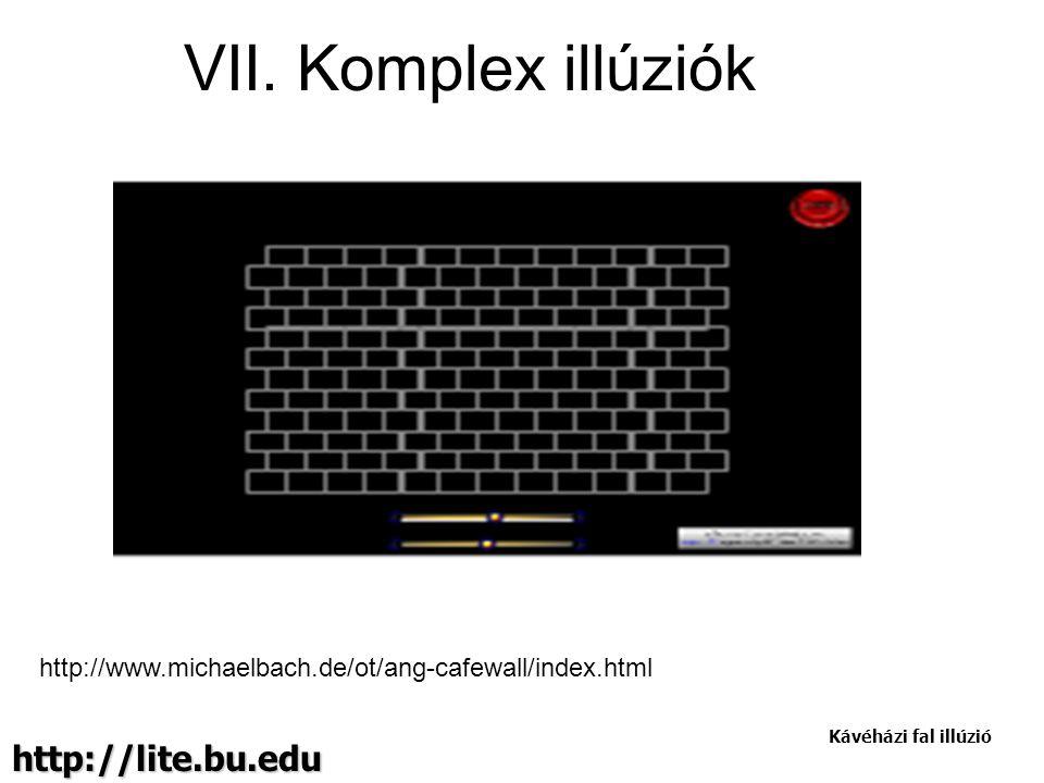 http://lite.bu.edu Kávéházi fal illúzió http://www.michaelbach.de/ot/ang-cafewall/index.html