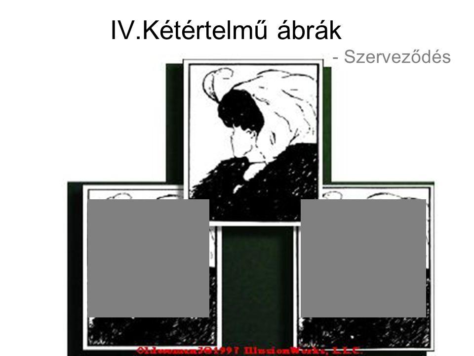 IV.Kétértelmű ábrák - Szerveződés