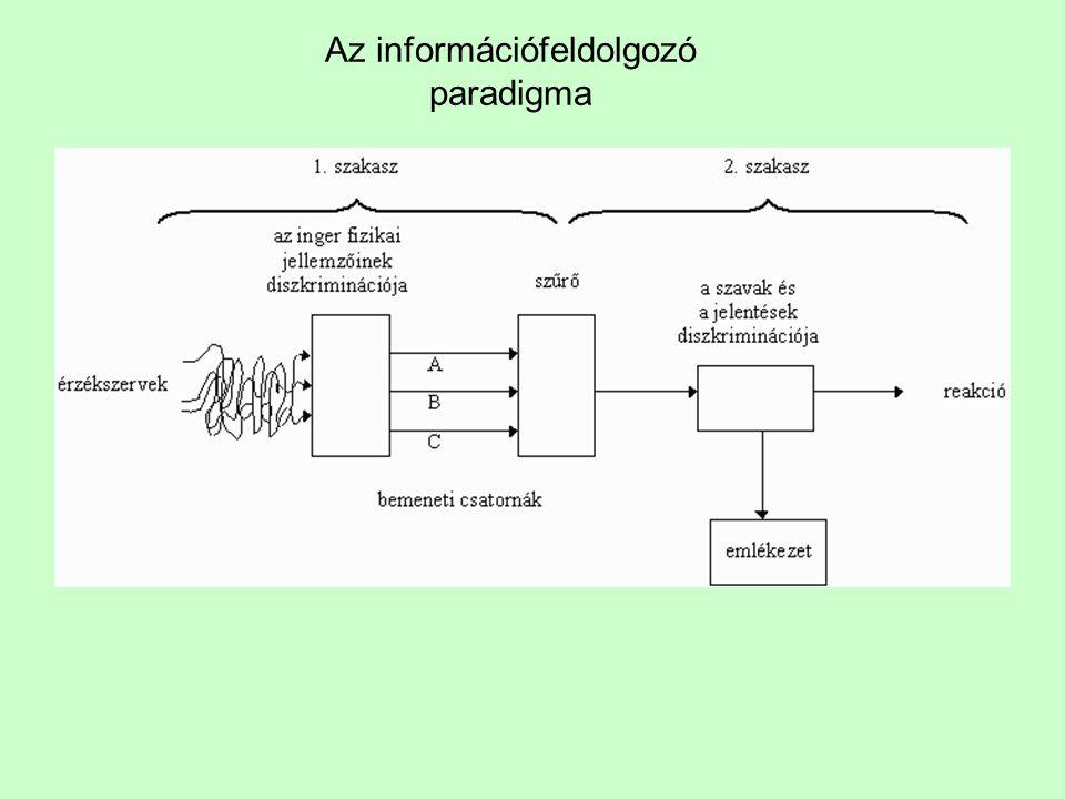 Az információfeldolgozó paradigma