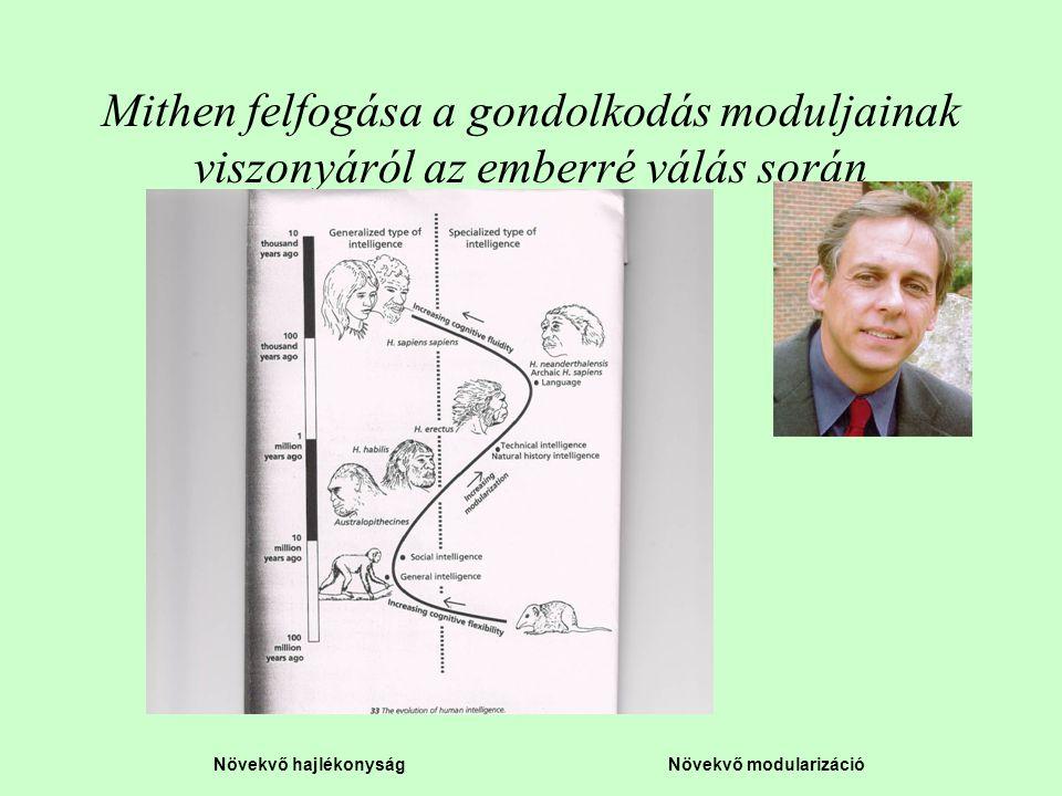 Növekvő hajlékonyság Növekvő modularizáció Mithen felfogása a gondolkodás moduljainak viszonyáról az emberré válás során