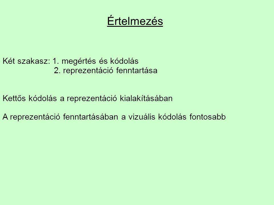 Értelmezés Két szakasz: 1. megértés és kódolás 2. reprezentáció fenntartása Kettős kódolás a reprezentáció kialakításában A reprezentáció fenntartásáb