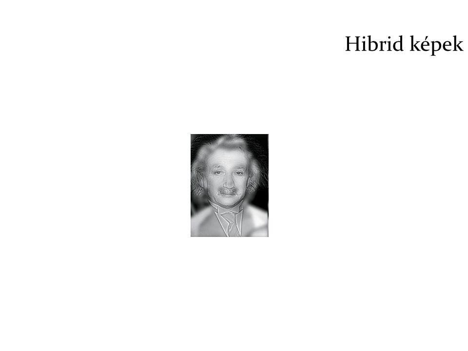 Hibrid képek