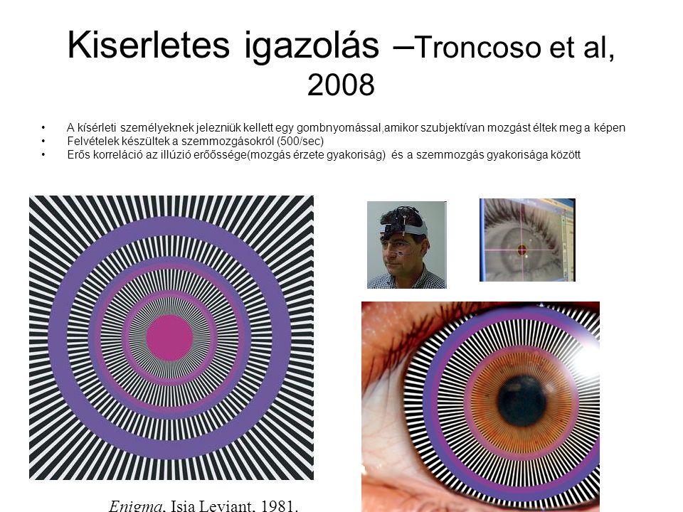 Kiserletes igazolás – Troncoso et al, 2008 A kísérleti személyeknek jelezniük kellett egy gombnyomással,amikor szubjektívan mozgást éltek meg a képen