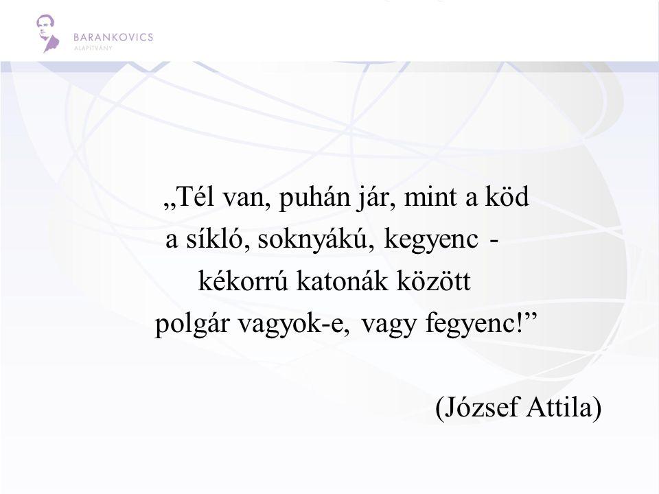 """""""Tél van, puhán jár, mint a köd a síkló, soknyákú, kegyenc - kékorrú katonák között polgár vagyok-e, vagy fegyenc!"""" (József Attila)"""