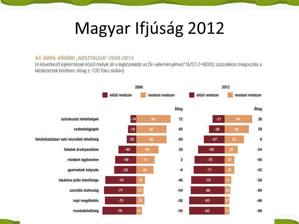 Magyar Ifjúság 2012
