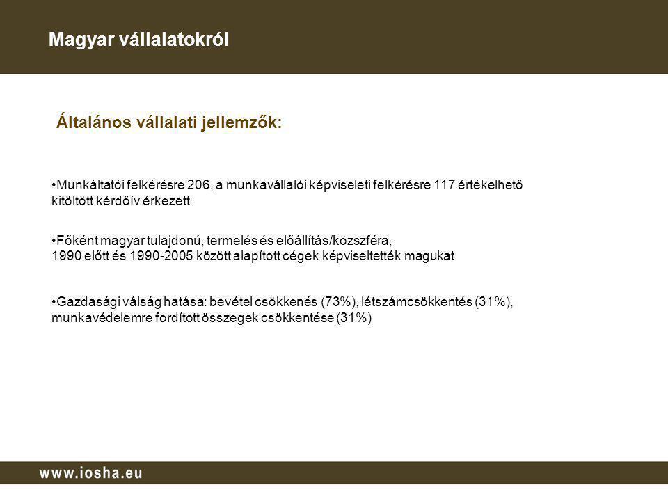 Magyarországi eredmények összefoglalása A vállalatok: 80%-ánál a munkabiztonságot és munkaegészségügyet is átfogó vállalati politikát is megfogalmaztak 32%-a munkahelyi egészségvédelmi és biztonsági-, 55%-a környezetközpontú irányítási rendszert működtet 45%-nál létezik mind a munkabiztonsági, mind a munkaegészségügyi szakembereket összefogó vállalati team egynegyede a vállalatirányítási üléseken rendszeresen érinti a munkavédelmi területeket 52%-uk munkabiztonságra és munkaegészségügyre elkülönített finanszírozási keretet is létrehozott A vállalatvezetés stratégiai döntéseit munkavédelmi szakemberekkel (75%), foglalkozás- egészségügyi orvosokkal (57%), HR vezetőkkel (41%) egyezteti