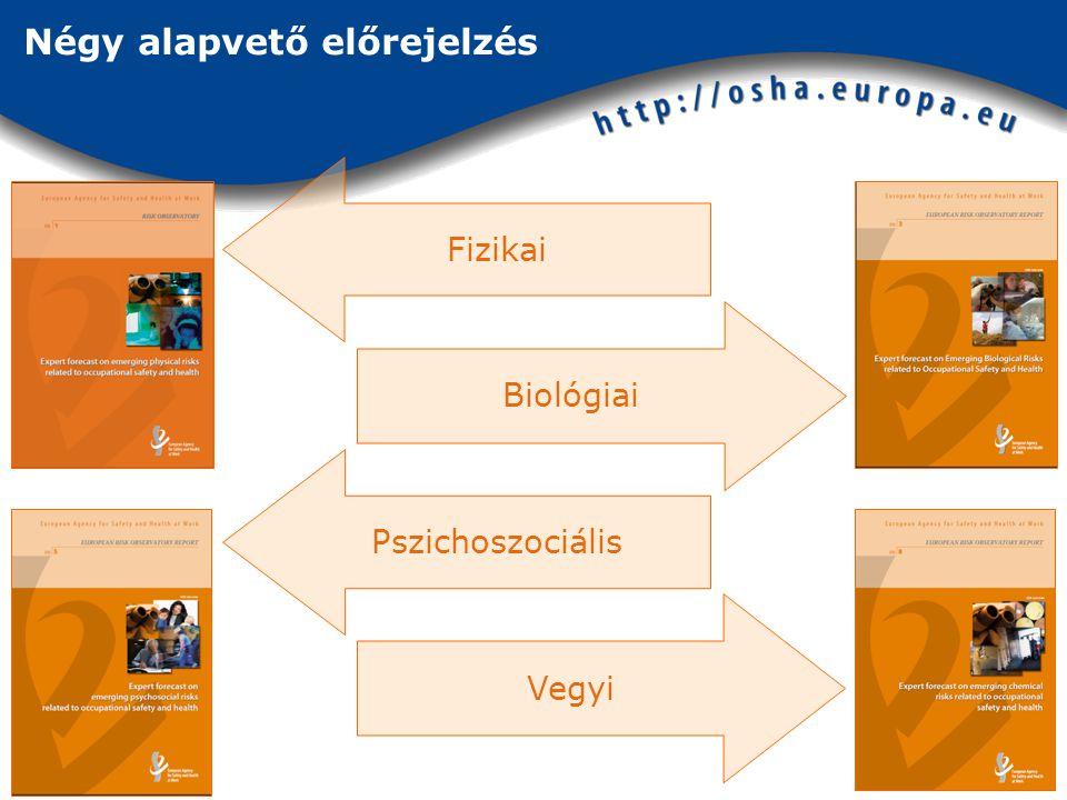 Négy alapvető előrejelzés Biológiai Vegyi Fizikai Pszichoszociális
