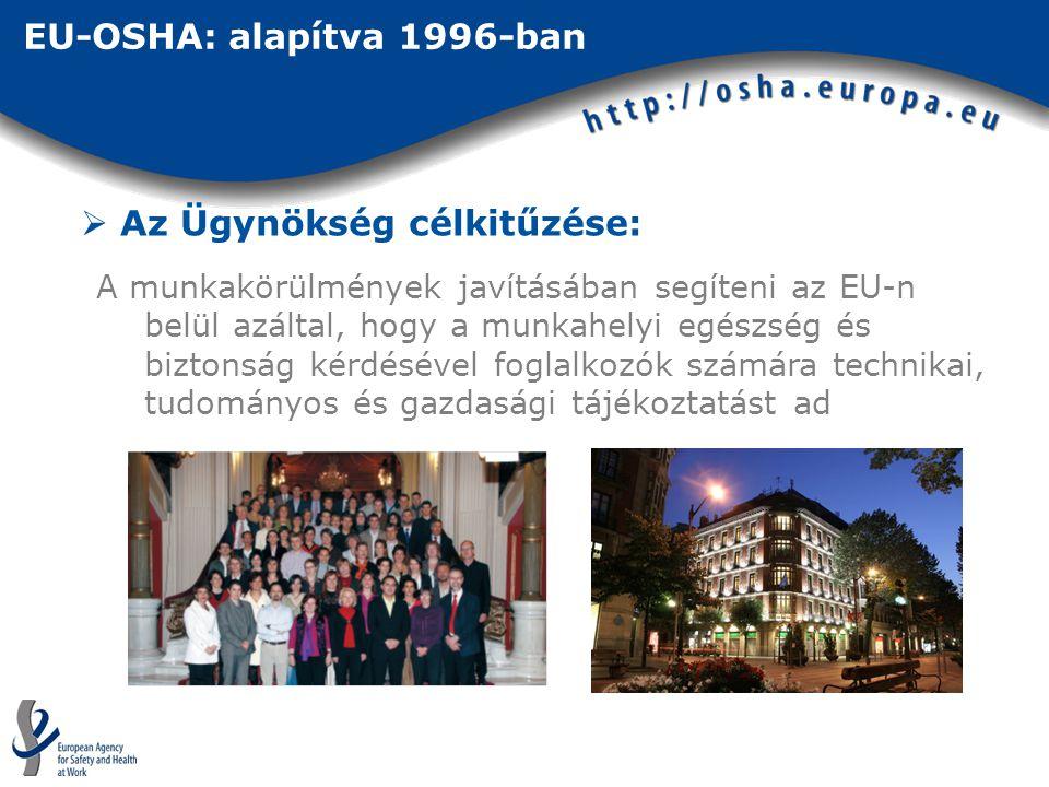 EU-OSHA: alapítva 1996-ban  Az Ügynökség célkitűzése: A munkakörülmények javításában segíteni az EU-n belül azáltal, hogy a munkahelyi egészség és biztonság kérdésével foglalkozók számára technikai, tudományos és gazdasági tájékoztatást ad