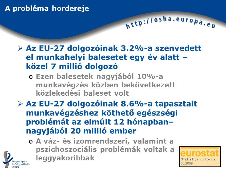 A probléma hordereje  Az EU-27 dolgozóinak 3.2%-a szenvedett el munkahelyi balesetet egy év alatt – közel 7 millió dolgozó oEzen balesetek nagyjából 10%-a munkavégzés közben bekövetkezett közlekedési baleset volt  Az EU-27 dolgozóinak 8.6%-a tapasztalt munkavégzéshez köthető egészségi problémát az elmúlt 12 hónapban– nagyjából 20 millió ember oA váz- és izomrendszeri, valamint a pszichoszociális problémák voltak a leggyakoribbak