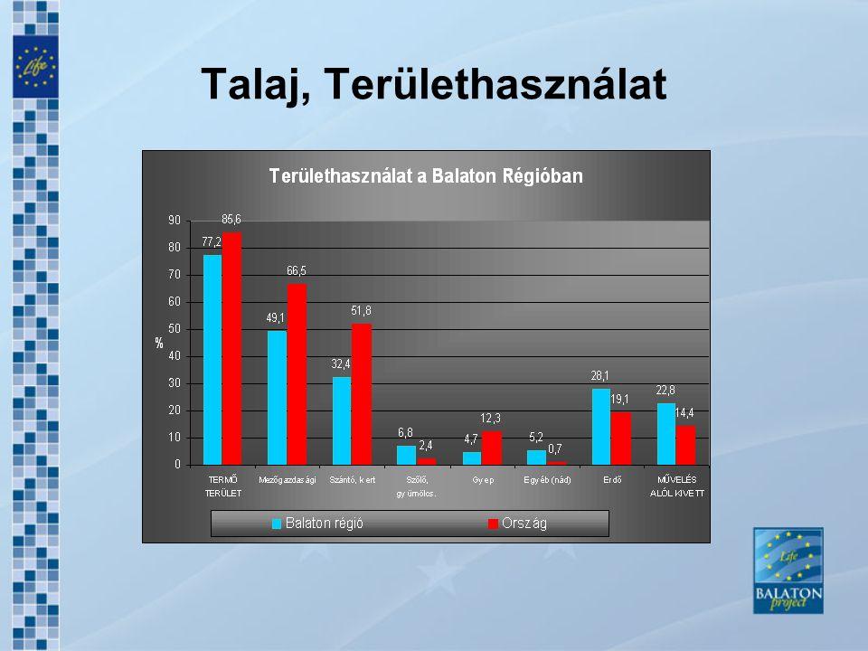Kommunális Infrastruktúra Szennyvíz elvezetés Ivóvízhálózat: 96,2% szennyvíz.hálózat: 67,5% Különbség a part közeli és háttértelepülések között A csatornázatlan területeken talajszennyezések léphetnek fel Csapadékvíz-elvezetés megoldatlansága