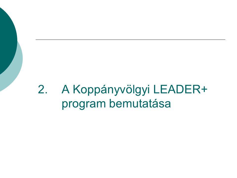 2. A Koppányvölgyi LEADER+ program bemutatása