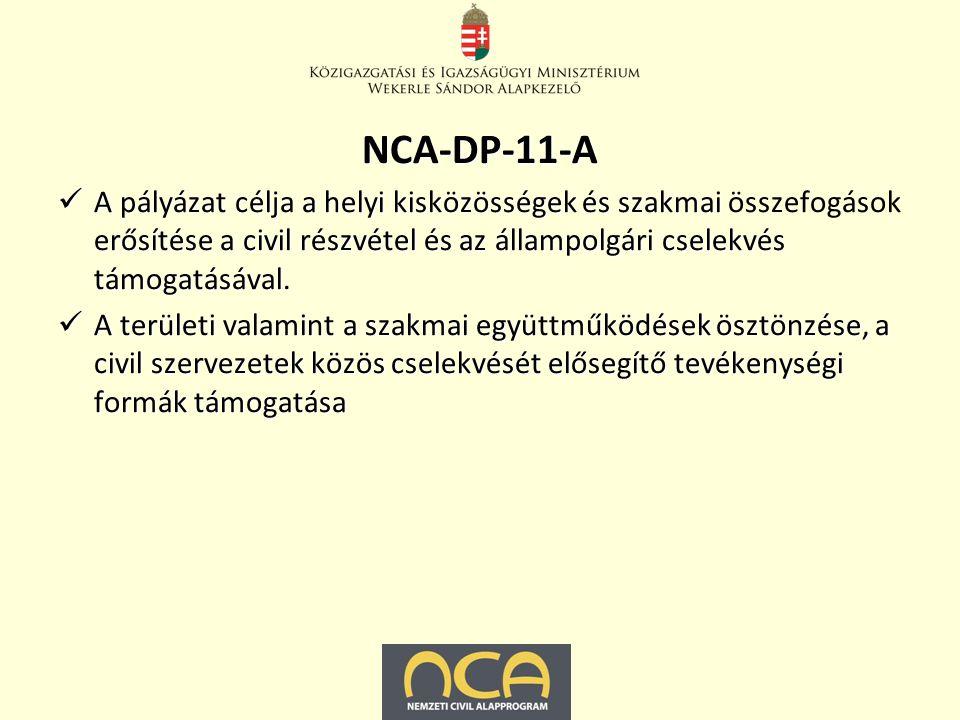 NCA-DP-11-A A pályázat célja a helyi kisközösségek és szakmai erősítése a civil részvétel és az állampolgári cselekvés támogatásával.