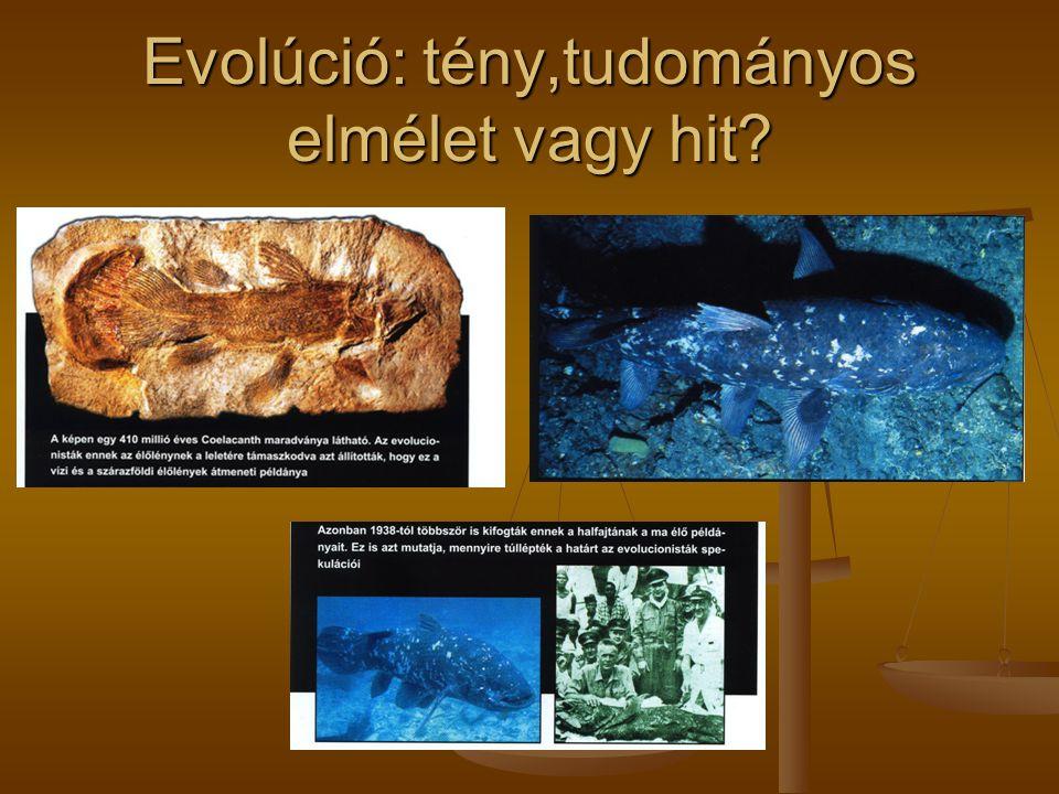 Evolúció: tény,tudományos elmélet vagy hit?