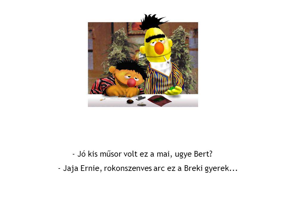 - Jó kis műsor volt ez a mai, ugye Bert - Jaja Ernie, rokonszenves arc ez a Breki gyerek...