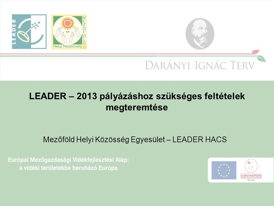 LEADER – 2013 pályázáshoz szükséges feltételek megteremtése Mezőföld Helyi Közösség Egyesület – LEADER HACS