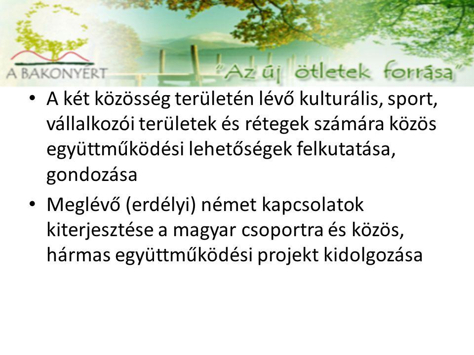 A két közösség területén lévő kulturális, sport, vállalkozói területek és rétegek számára közös együttműködési lehetőségek felkutatása, gondozása Meglévő (erdélyi) német kapcsolatok kiterjesztése a magyar csoportra és közös, hármas együttműködési projekt kidolgozása