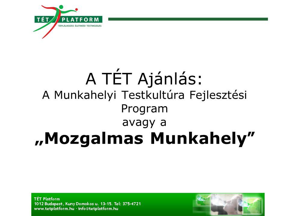 """A TÉT Ajánlás: A Munkahelyi Testkultúra Fejlesztési Program avagy a """"Mozgalmas Munkahely"""