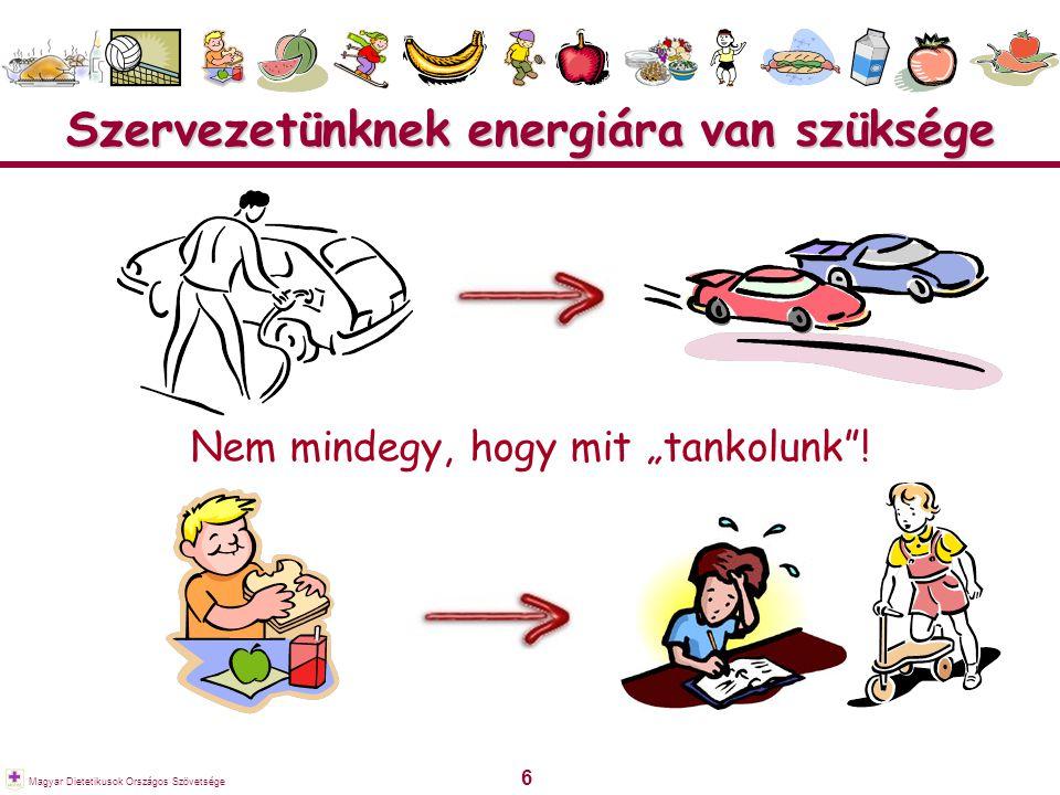 """6 Magyar Dietetikusok Országos Szövetsége Szervezetünknek energiára van szüksége Nem mindegy, hogy mit """"tankolunk""""!"""
