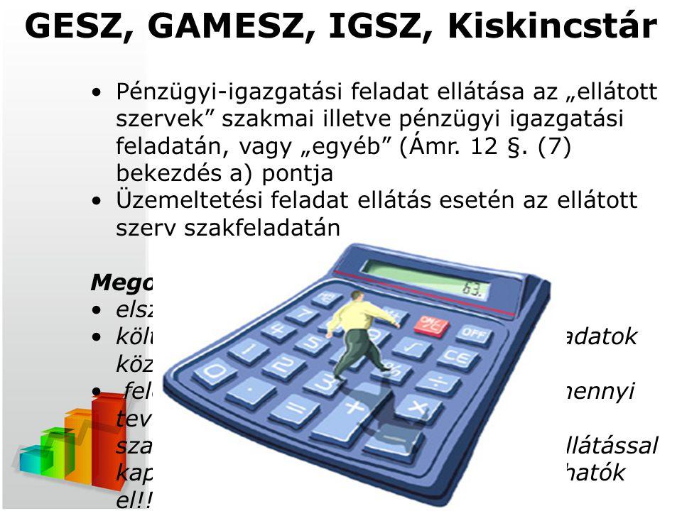 """t GESZ, GAMESZ, IGSZ, Kiskincstár Pénzügyi-igazgatási feladat ellátása az """"ellátott szervek"""" szakmai illetve pénzügyi igazgatási feladatán, vagy """"egyé"""