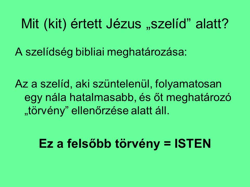 """Mit (kit) értett Jézus """"szelíd"""" alatt? A szelídség bibliai meghatározása: Az a szelíd, aki szüntelenül, folyamatosan egy nála hatalmasabb, és őt megha"""