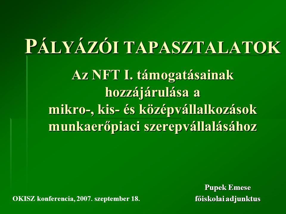 P ÁLYÁZÓI TAPASZTALATOK Az NFT I.