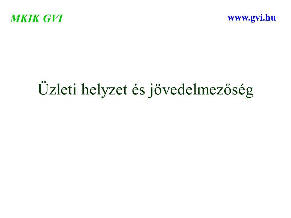 Üzleti helyzet és jövedelmezőség MKIK GVI www.gvi.hu