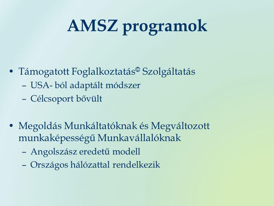 AMSZ programok Támogatott Foglalkoztatás © Szolgáltatás –USA- ból adaptált módszer –Célcsoport bővült Megoldás Munkáltatóknak és Megváltozott munkaképességű Munkavállalóknak –Angolszász eredetű modell –Országos hálózattal rendelkezik