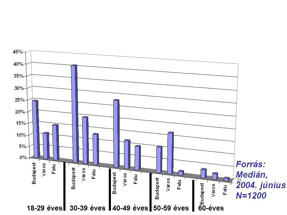 Internet kapcsolattal rendelkezők (Korcsoportonként és településtípusonként 2004.