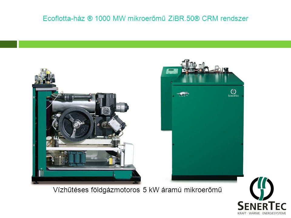 Ecoflotta-ház ® 1000 MW mikroerőmű ZiBR.50® CRM rendszer Vízhűtéses földgázmotoros 5 kW áramú mikroerőmű