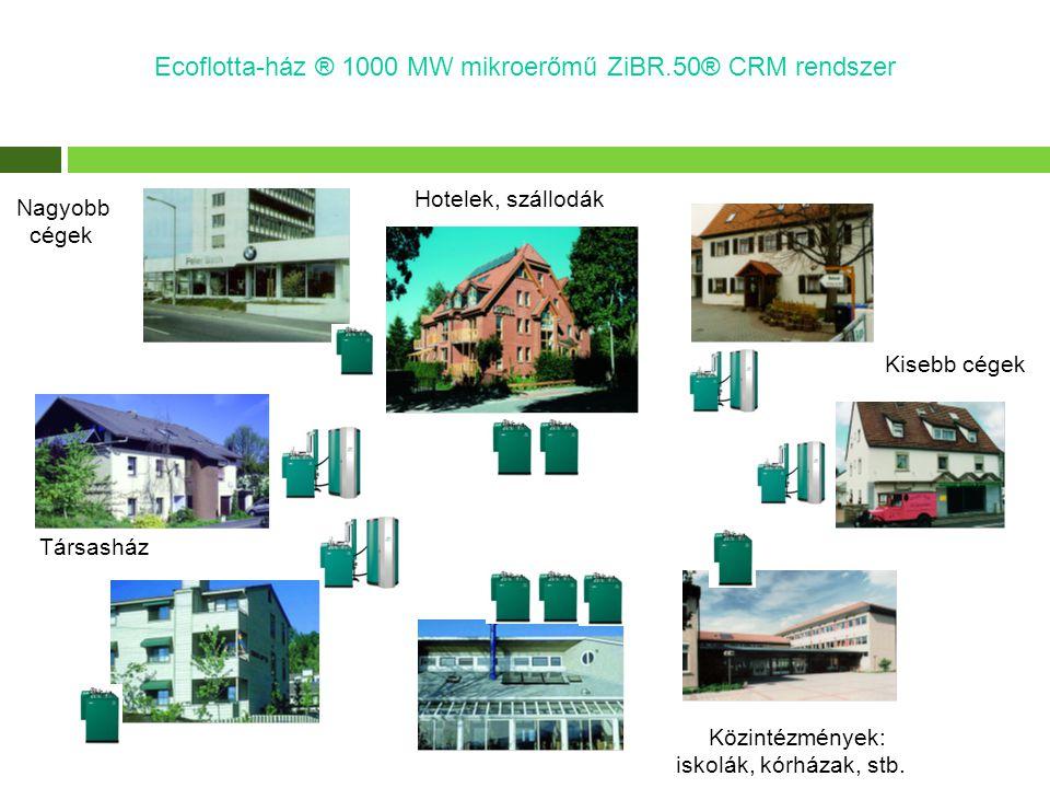 Kisebb cégek Közintézmények: iskolák, kórházak, stb. Társasház Hotelek, szállodák Ecoflotta-ház ® 1000 MW mikroerőmű ZiBR.50® CRM rendszer Nagyobb cég
