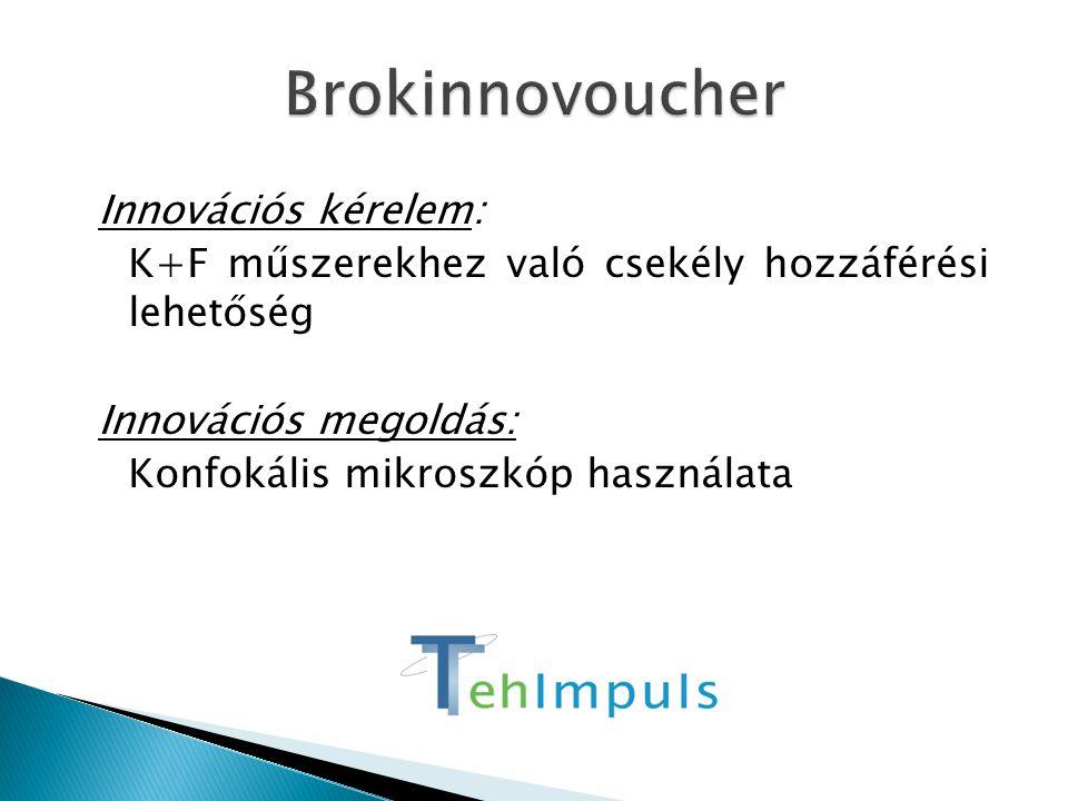 Innovációs kérelem: K+F műszerekhez való csekély hozzáférési lehetőség Innovációs megoldás: Konfokális mikroszkóp használata